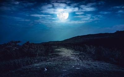 Poem – Los Cabos at Night